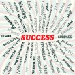 Success — Stock Vector