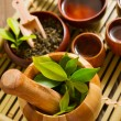 The chinese tea ceremony — Stock Photo