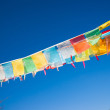 Buddhist prayer flags — 图库照片