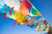 Bandeiras de oração budista — Foto Stock