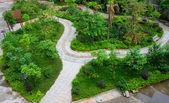 Ornamental garden — Stock Photo