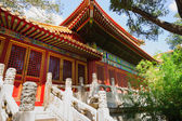 Details of architecture in Forbidden City — Stock Photo