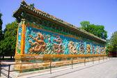 The Nine Dragon Wall — Stock Photo