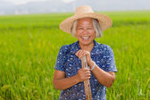 Chinese peasant — Stock Photo