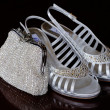 Brides silver shoes — Stock Photo