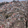 Residential Shimla, India — Stock Photo #46623891