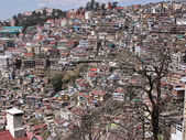Residential Shimla, India — Stock Photo