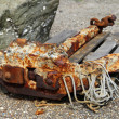 Rusty anchor — Stockfoto