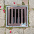 Manhole cover — Stockfoto #31818189