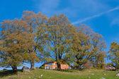 Countryside Alpine Chalet — Stock Photo