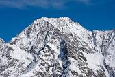 Austrian Alps Detail — Stock Photo