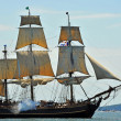 Stock Photo: HMS Bounty Tall Ship that sank in Hurricane Sandy