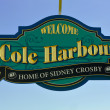 Cole Harbour signs show pride of superstar — Stock Photo