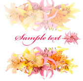 Gentle soft card with lily on a white background — Stock Photo