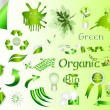 Ecological nature labels and symbols vector set — Stock Vector