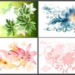 Floral design elements — Stock Vector