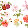 Color illustration of flowers in vector paintings - Stock Vector
