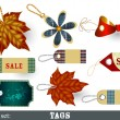 Collection of decorative vector tags — Stock Vector
