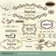 Calligraphic vector design elements — Stock Vector
