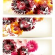 图库矢量图片: Collection of flower vector backgrounds