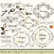 Collection of calligraphic decorative vector elements in vintage — Stock Vector