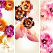 Flower vector backgrounds set — Imagens vectoriais em stock