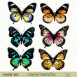 Collection of vector colorful realistic butterflies - Stock Vector
