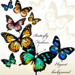 Vector de stock : Fashion background with butterflies