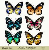 Collection de papillons réaliste colorés de vecteur — Vecteur