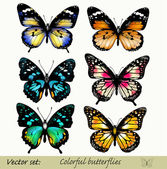 Collection of vector colorful realistic butterflies — Stok Vektör