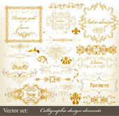 Gold-framed luxury calligraphic design elements and page decorat — Stock Vector