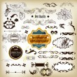 Antique vector  set of decorative labels, calligraphic elements — Grafika wektorowa