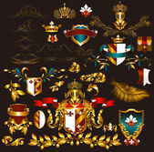 Collection of gold-framed heraldic elements — Stock Vector