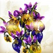 Realistic vector bouquet of irises flowers — Stok Vektör #18246975