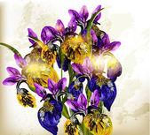 Realistic vector bouquet of irises flowers — Stock Vector