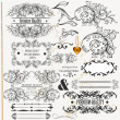 Calligraphic design elements and page decorations — Stock Vector #19211075