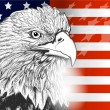 American flag and eagle symbol of USA ,independence and freedom - Vektorgrafik