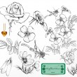 Collection of hand drawn roses for design — Imagen vectorial