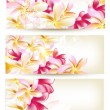 Collection of flower vector backgrounds — Stock Vector