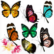 Collection of colorful realistic vector butterflies - Stock Vector