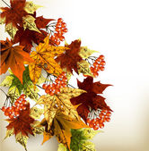 Autumn grunge background with mapple leafs — 图库矢量图片
