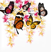 Colorful vector background with realistic tropical butterflies a — Vettoriale Stock