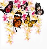 Fondo colorido vector con mariposas tropicales realistas un — Vector de stock
