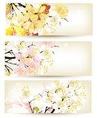 Kolekce květin vektorové pozadí — Stock vektor