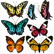 Colorful collection of vector realistic butterflies for design - Stock Vector