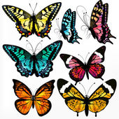 Colorful collection of vector realistic butterflies for design — Stock Vector