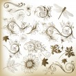 Collection of swirl floral vector elements for design - Stock Vector
