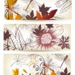 Floral backgrounds set - Stockvektor