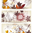 Floral backgrounds set - Image vectorielle