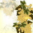 Grunge design with realistic crustier of  wine grapes and ornament - Stockvektor